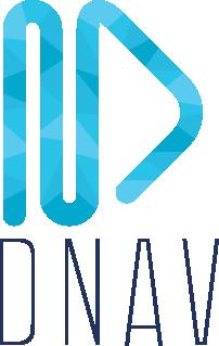 DNAV Inc